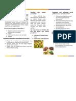 flayer zoonosis.docx