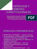 LOSDERECHOSYDEBERESCONSTITUCIONALES_000