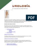 ANATOMIA_Y_FISIOLOGIA_DEL_SISTEMA_NERVIOSO.doc