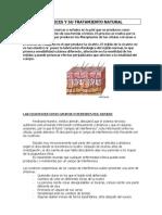Tratamiento de las cicatrices - Articulo.pdf