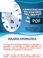 Capacitación vector Dengue