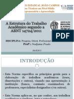 Introdução às normas da ABNT.pdf