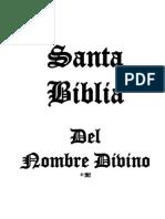 Mi Proyecto Bíblico (una sola columna)