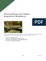 CK 12+Biology+Chapter+4+Worksheets