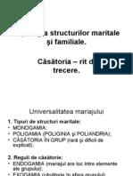 Tipologia Structurilor Maritale Si Familiale