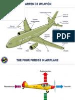 Flight Aviation