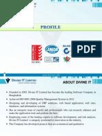 DivineIT Company Profile 2013