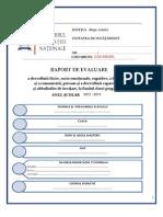 Raport de Evaluare Clasa Pregatitoare