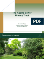 Aging Urinary Tract