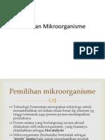 fermentasi-12