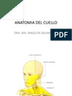 faringe-laringe