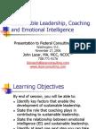 Sustainable Leadership Coaching and EmotionalIntelligence