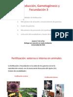 3-Fecundacion
