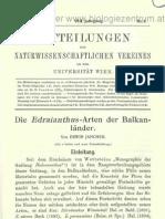 Janchen Die Edraianthus-Arten der Balkanländer. (Tafel 1-4.) MNVUniWien_8_0001-0040