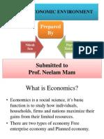 Indian Economic Environment