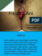 Fissura Ani