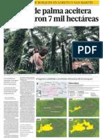 Deforestacion Bosques Amazonia Peru