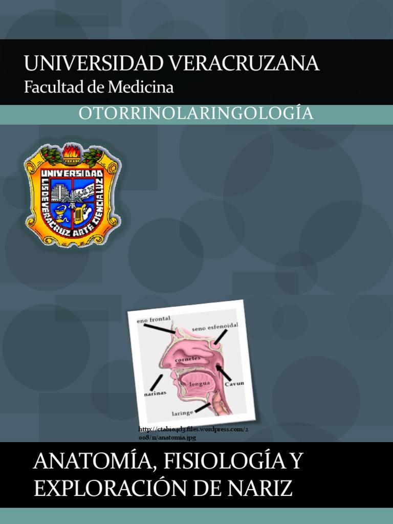 anatomiafisiologiayexploraciondenariz-110313121537-phpapp02