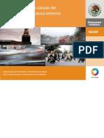 Diez Principales Causas Defuncion x Lesiones Externas en Mexico 2008