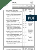 planificarea auditului