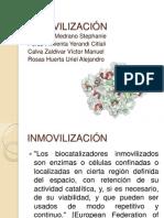 INMOVILIZACIÃ_N_PPT[1]