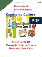 Proyecto Cultura