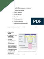 ApuntesT10.pdf