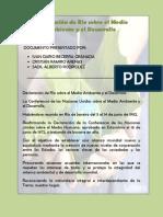 Declaración de Rio y los 27 principios