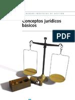 ConceptosJuridicosBasicos Cas