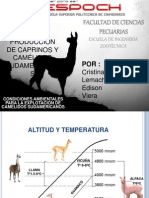 Seminario 3 Condiciones Ambientales Camelidos