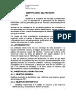 Proyecto Inversion RECICLAJE PET_javier