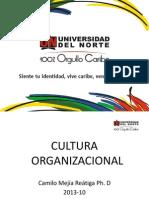 Cap.11 - Cultura Organizacional
