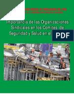 ANALISIS DE LA LEY 29783 Y REGLAMENTO SST.pdf