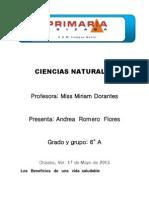 Proyecto Ciencias Naturales