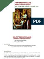 Santo Rosario Virgen de Guadalupe