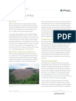 Patagonia Paper Procurement Policies