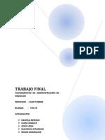 TRABAJO FINAL FAN GRUPAL.docx