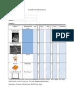 group perimeter investigation worksheet