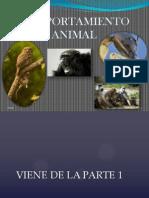 Comportamiento Animal - Parte 2