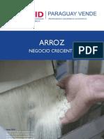 arroz negocio creciente 2010.pdf