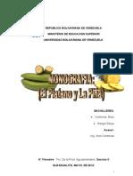 monografia el platano.doc