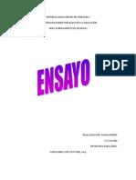 Ensayo (Propiedades de Los Sistemas) Maria Ferrer 16-05-2013