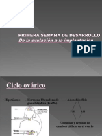 III Clase de Embriologia