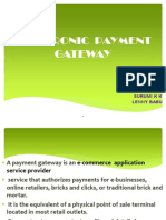 Electronic Payment Gateway