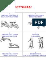 Esercizi pettorali 1