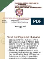 11virus Papoloma Humano, Neoplasia Cervical Cancer de Vulva Cancer de Vagina