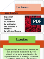 Les Rosiers Power Point