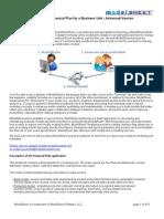 Business Unit Financial Plan