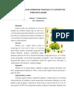 Plante Si Produse Vegetale Cu Continut de Substante Amare