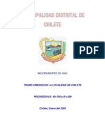 Informe Completo 2009